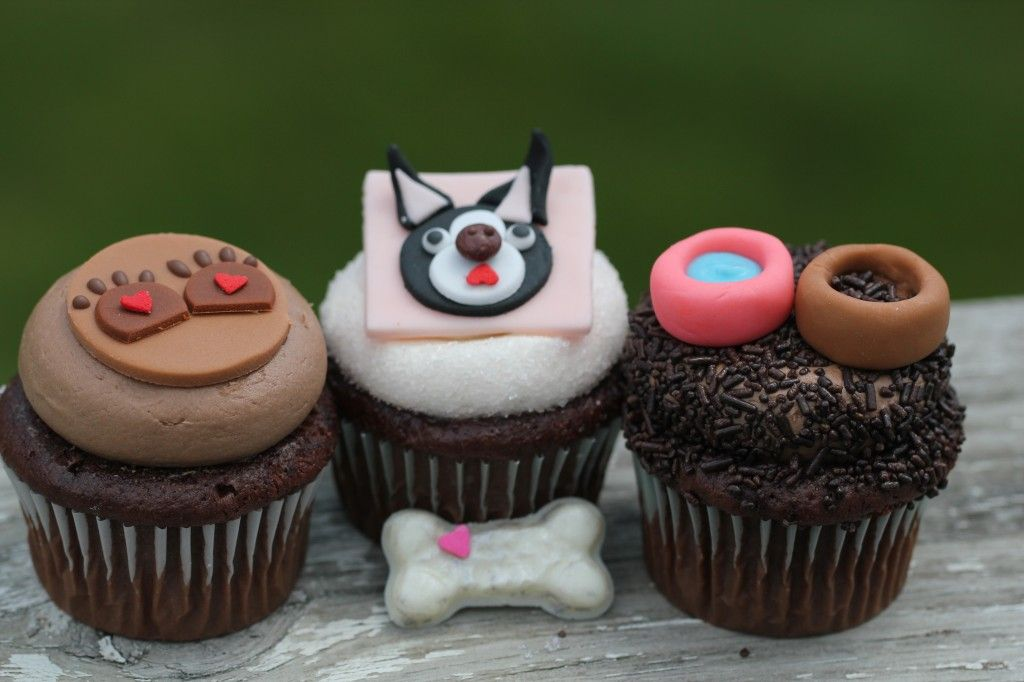 Boston Terrier Dog Cupcakes Baked By Lauren Elsasser Aka The Miss Cupcake