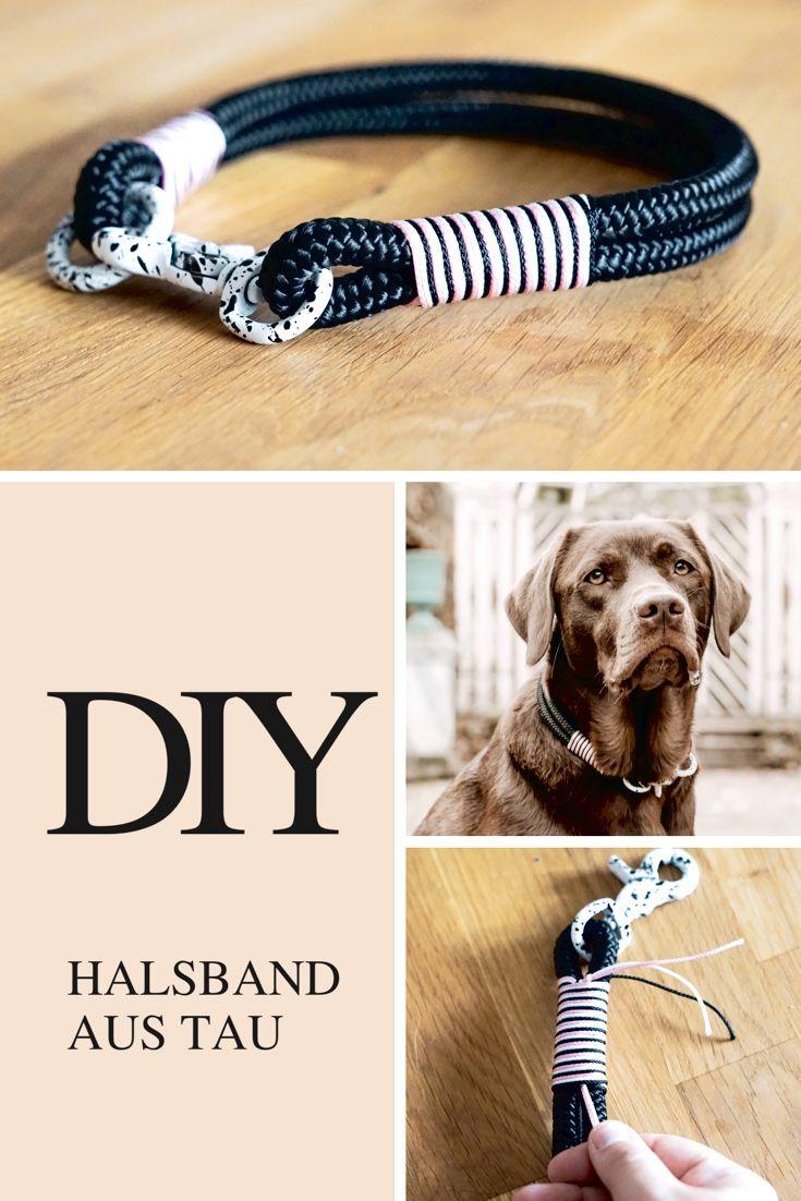 Hier erfahrt ihr, wie ihr ganz einfach selbst ein Halsband für euren Hund herstellen könnt, wo es die Materialien zu bestellen gibt und, was ihr benötigt. #diy #halsband #halsbänder #hunde #hundehalsband #basteln