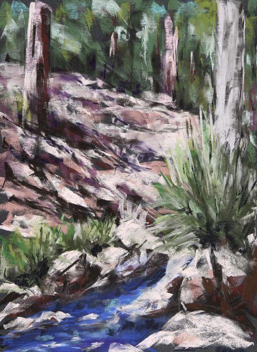 Spring - Mt. Lemmon - Pastel