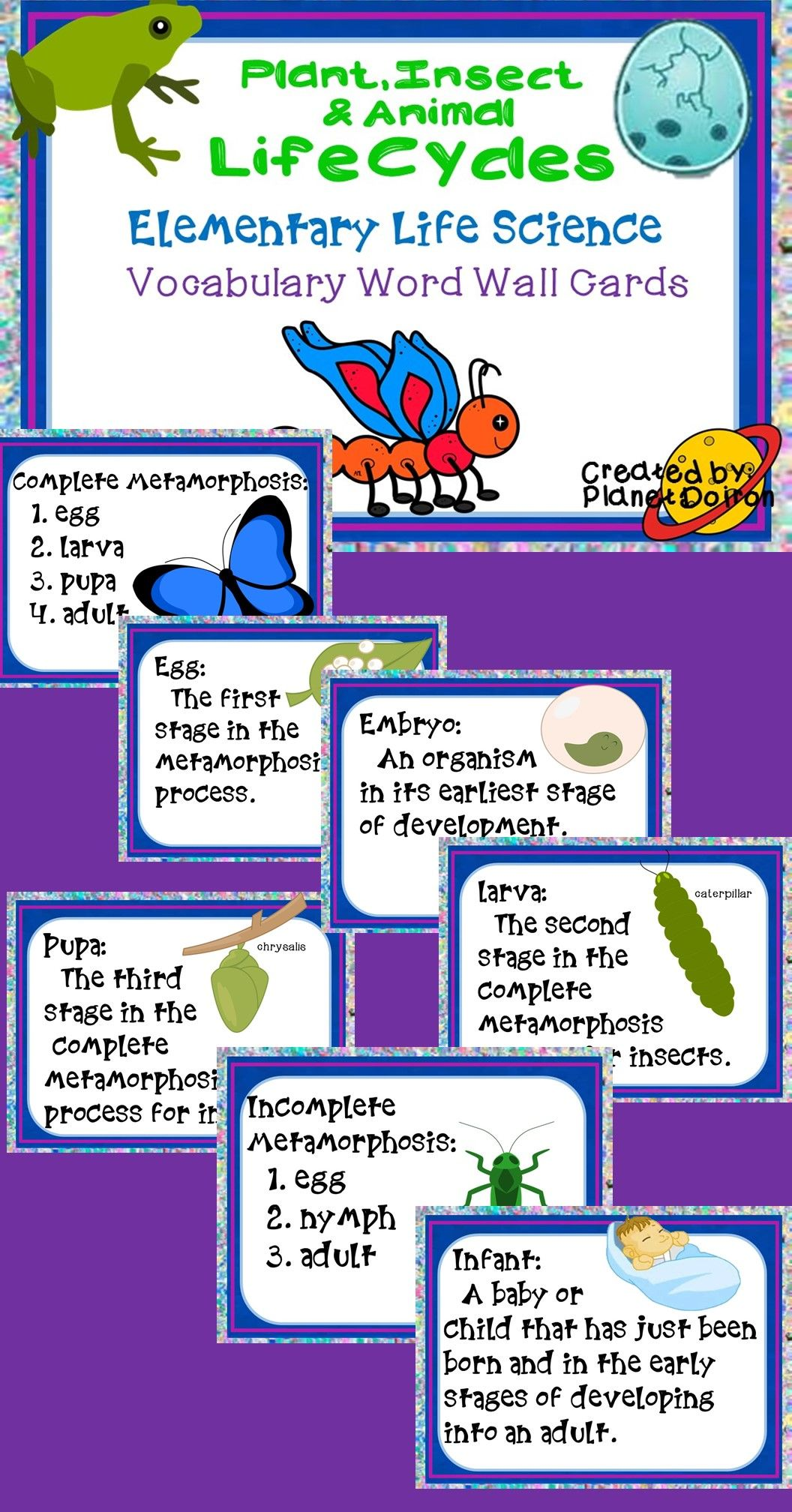 Insects Animals And Plant Life Cycles Science Vocabulary