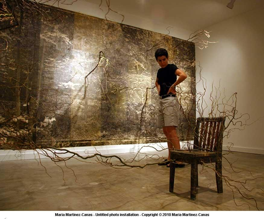 Maria Martinez-Canas Photo Paintings