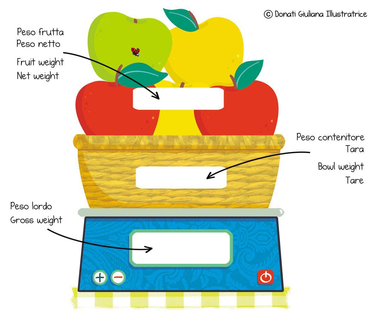 Net Weight Gross Weight And Tare