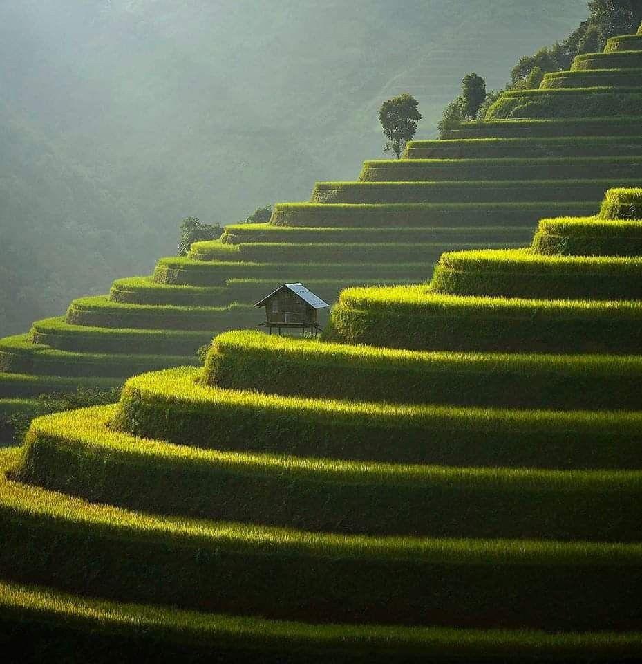 Pin By Liz Bautista On Fondos In 2020 Vietnam Nice View Scenery