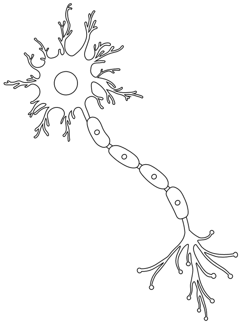 Neuron Coloring Page Printable Coloring Pages Coloring Pages Free Printable Coloring