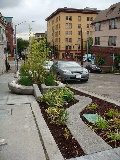 Maynard Avenue Green Street 3 by Seattle Department of
