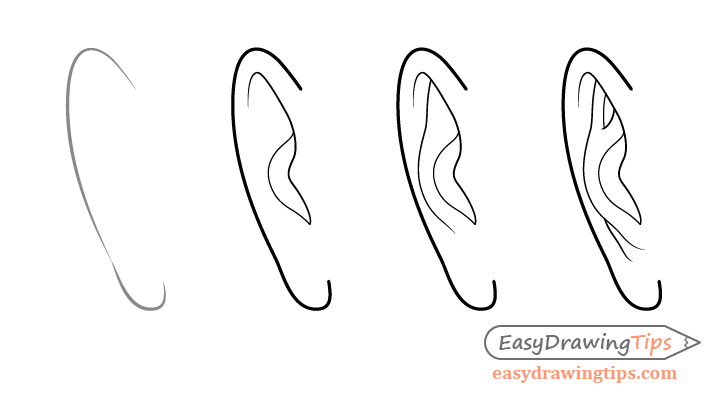 Male Ear Front View Drawing Step By Step How To Draw Ears Nose Drawing Step By Step Drawing
