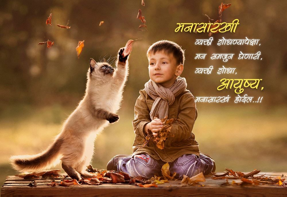 आयुष्य in 2020 Animals, Pets, Animals for kids