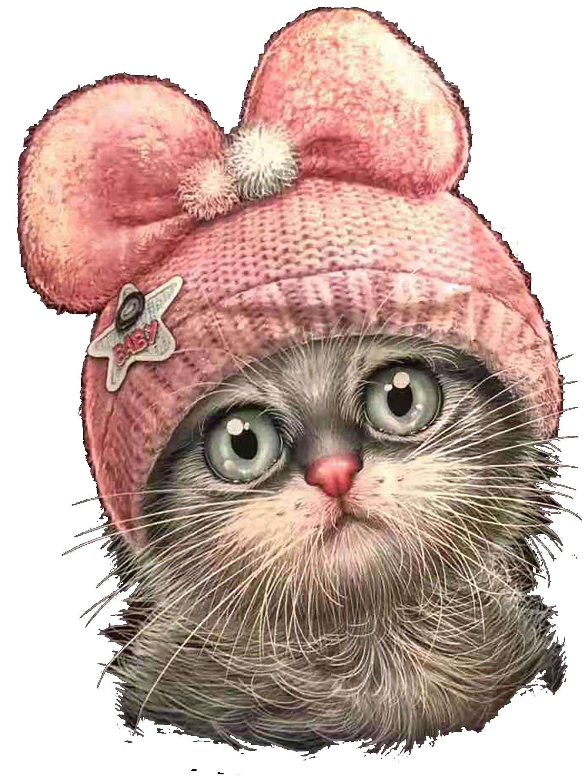 Pin By Jane Choban On ơ Lp L Kitten Drawing Cat Art Deer Art Print