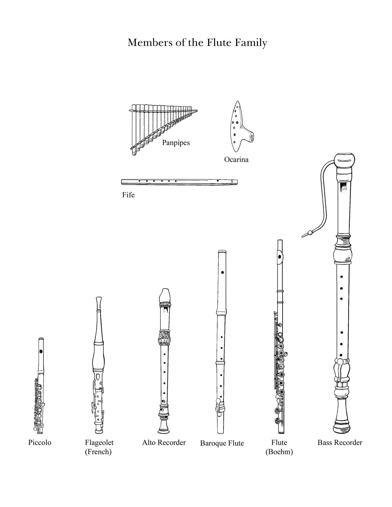 The Flute Family Drawings Of Instruments From The