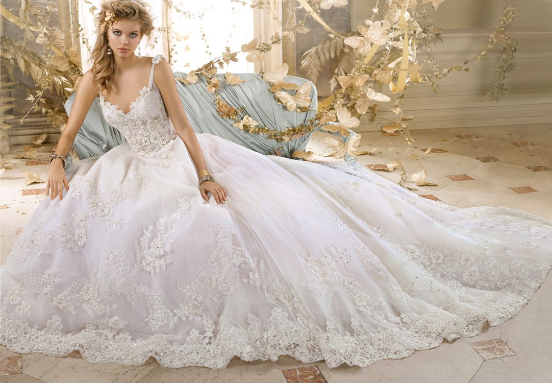 Blush Ball Gown Wedding Dress: Look What Just Arrived At Blush! Amalia Carrara Collection