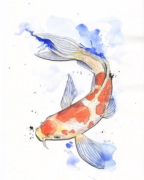 Inktober 20 All Colored In This Koi Is Done Illustration Koi