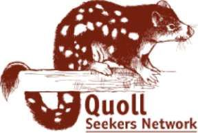 I like this depiction of a quoll.  Wildlife Queensland - Quoll Seekers Network