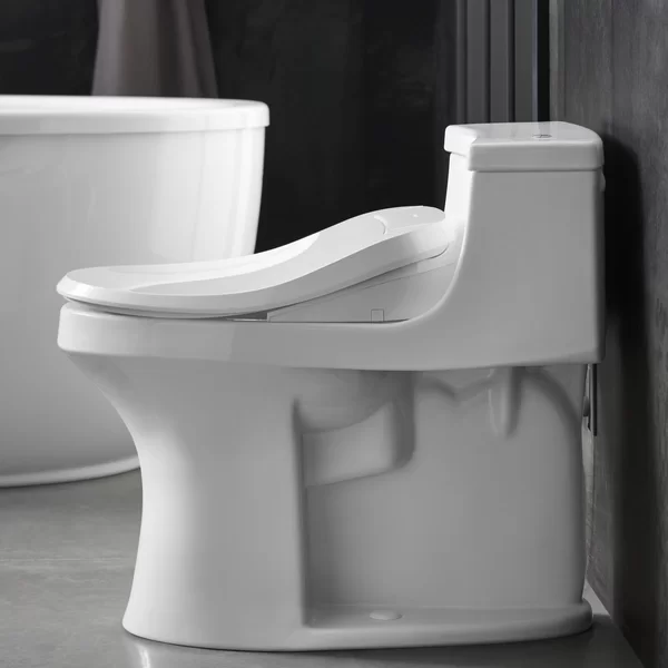 C3 Toilet Seat Bidet Elongated Bidet Seat In 2020 Bidet Toilet