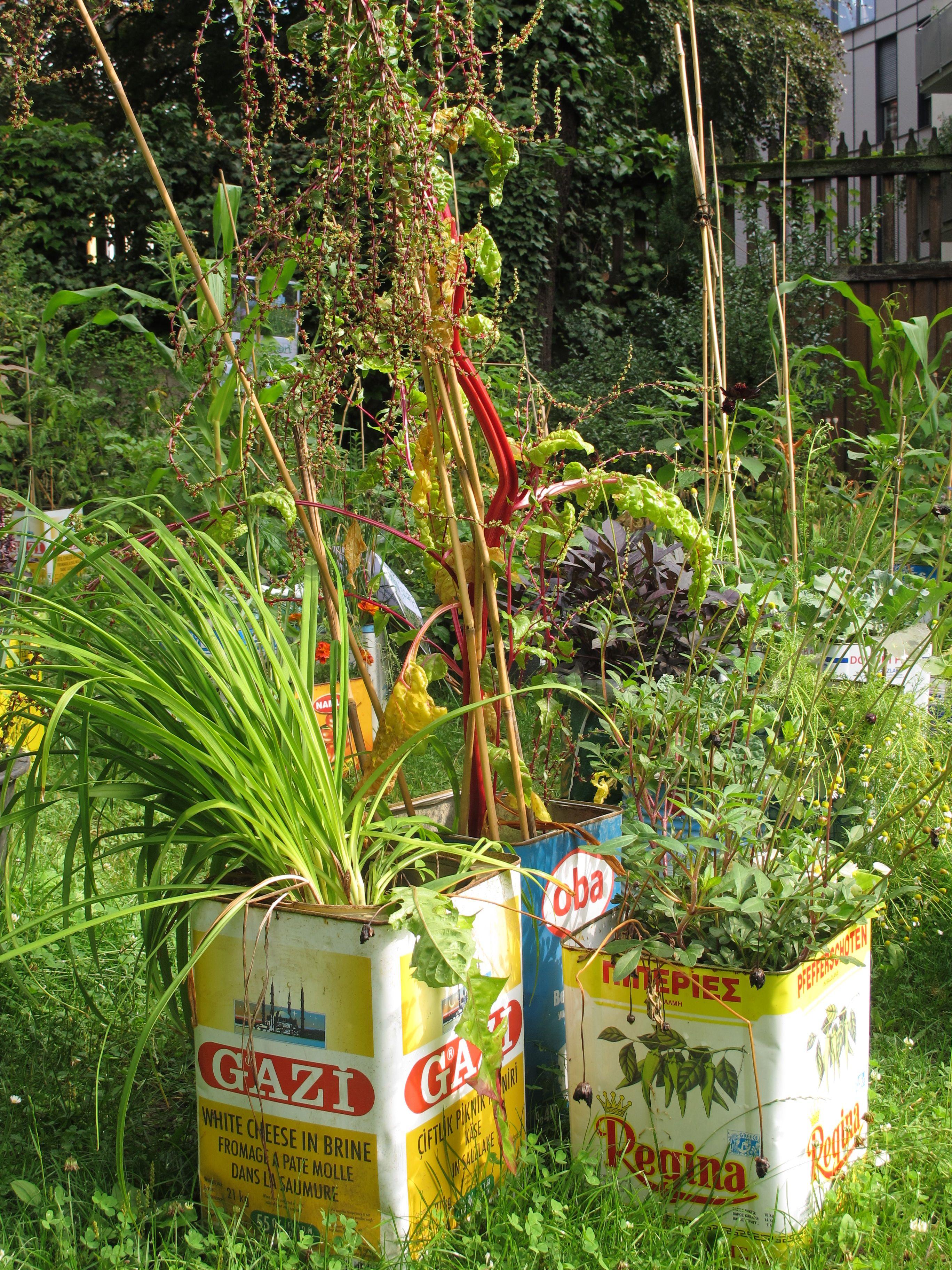Brilliant Grüne Pflanzen Foto Von