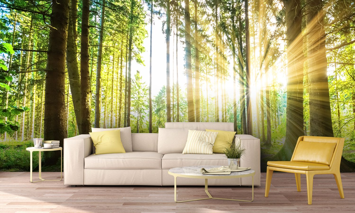 Forest Panoramic with Sunbeams Wall Mural | Wall murals, Forest ...