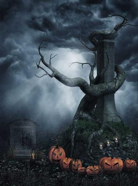 Printed Photo Background - Dark Halloween With Mysterious Tree - halloween backdrop