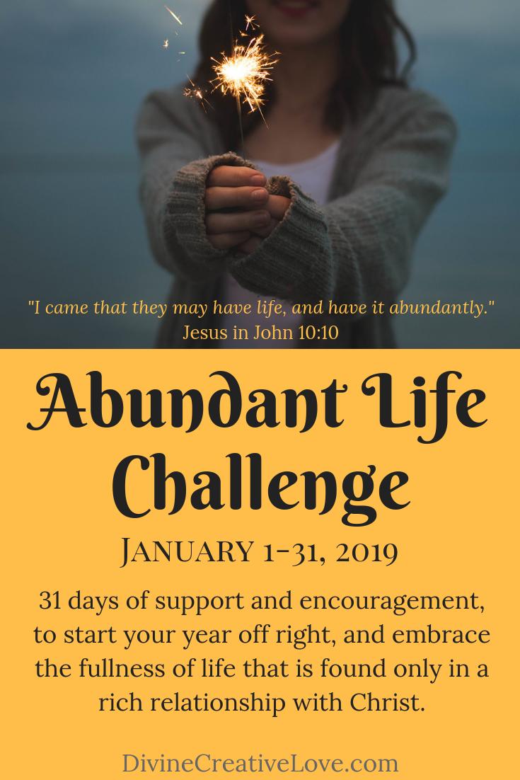 Abundant Life Challenge 2019 Abundant life, Life