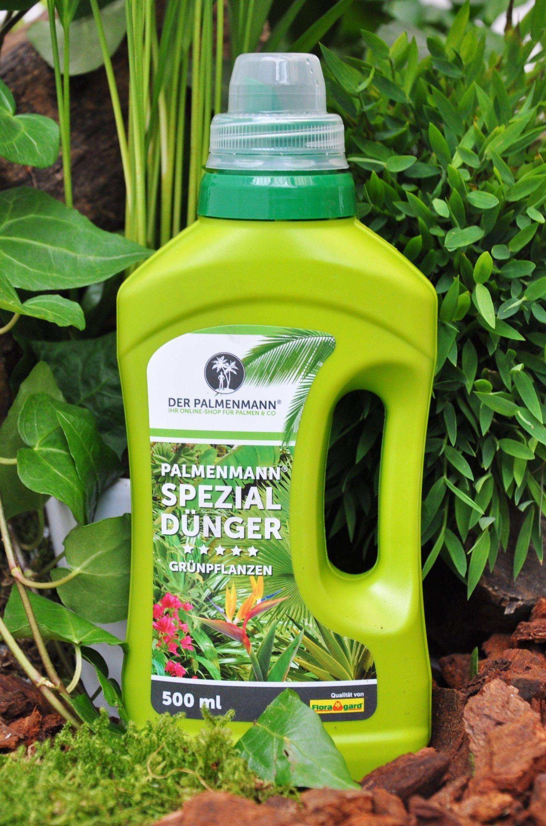 Palmenmann Spezialdunger Fur Grunpflanzen