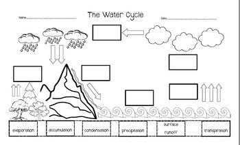 Awesome Water Activities Worksheet Water Math & Science