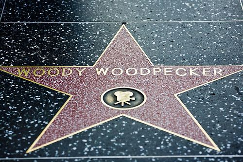 Resultado de imagem para the woody woodpecker star