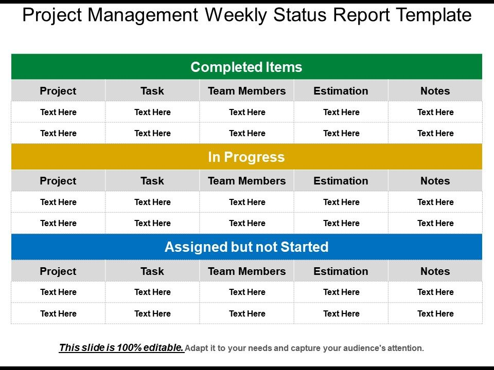 Project Management Status Report Template 4 Professional Templates