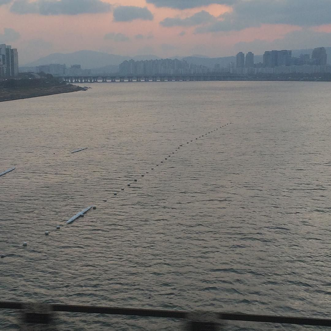 2015-11-26 목요일 차가운 날씨.. 차가운 모습.. 그나마 넘실대는 강물만 여유있어 보이네.. 차가운 바람에 정신이 번쩍든다.. 그래.. 겨울이지.. 겨울은 나를 돌아보게 한다.. 좋은 날이다.. 해피 목요일 #한강 #출근길
