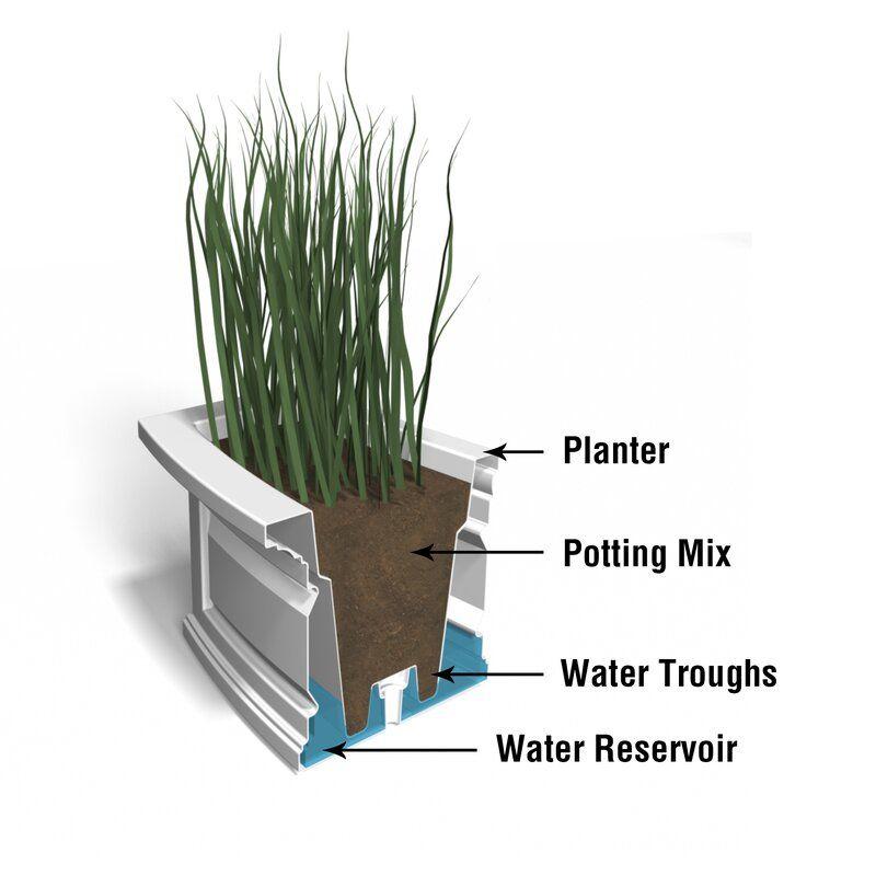 Kentshire Self Watering High Grade Polyethylene Window Box Planter In 2020 Window Planter Boxes Planter Boxes Plastic Planter Boxes