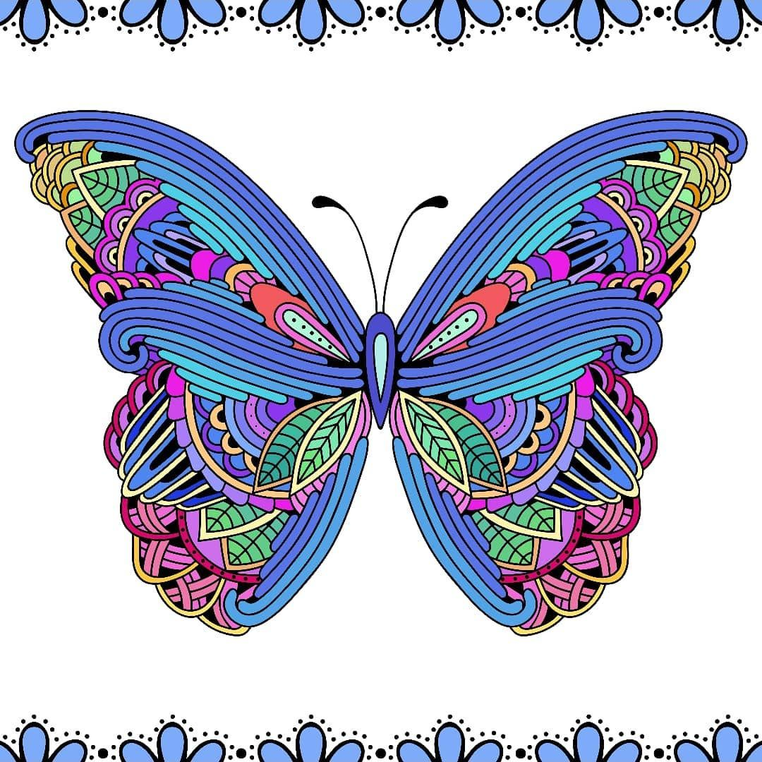 Butterfly Dragon Pictures Bible Coloring Nature Wall Art