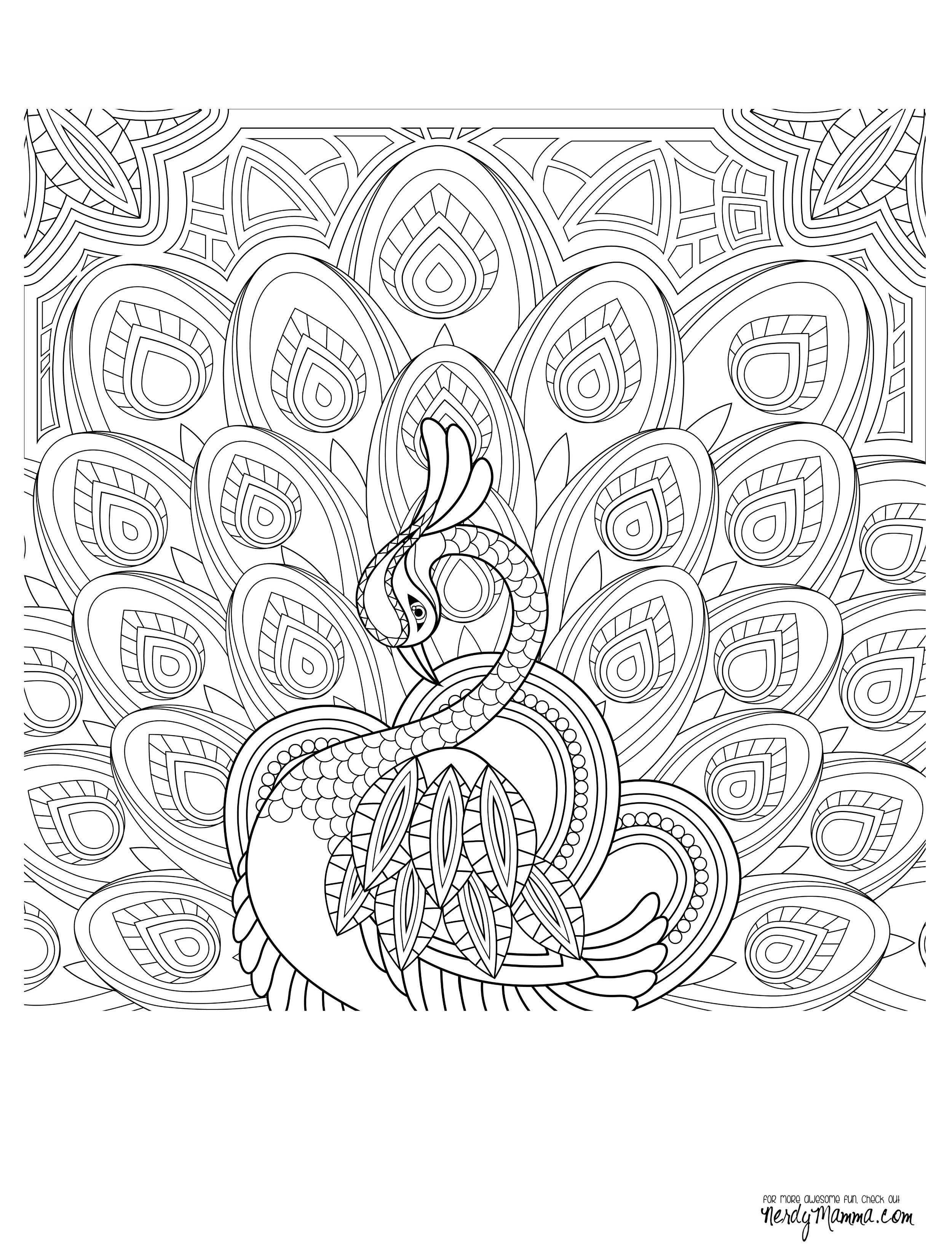 Free coloring pages of peacock feathers coloring everyday printable - Peacock Adult Coloring Page More