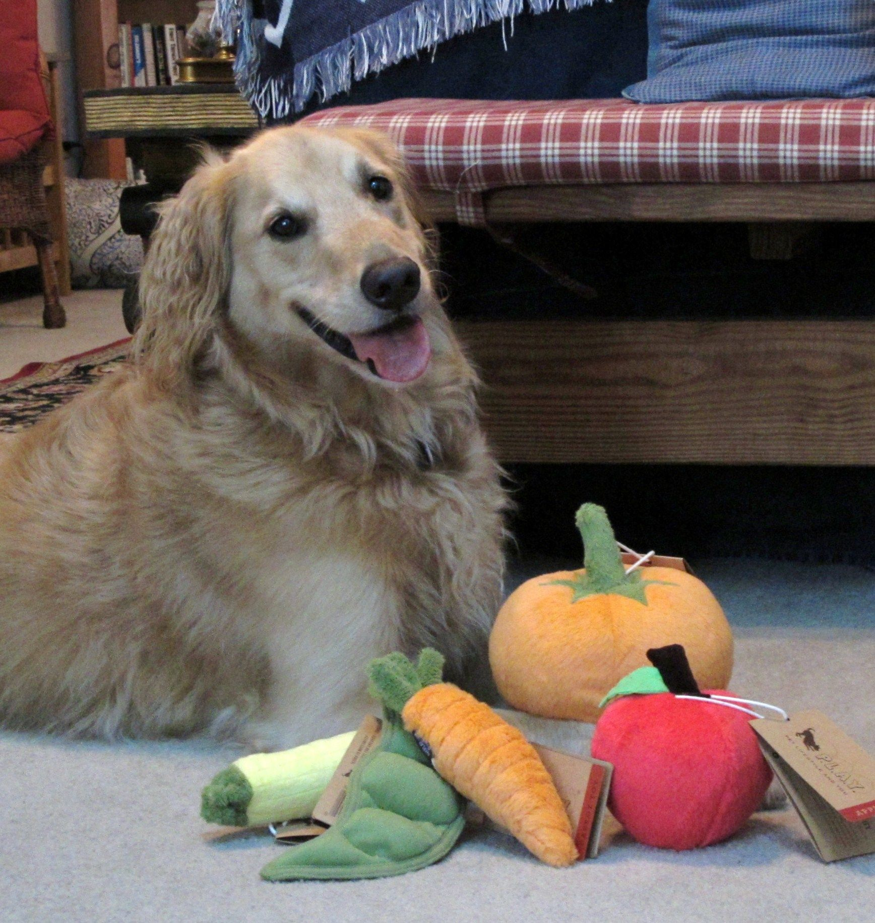 Fresh Veggie Plus Toys By Pet Lifestyle And You Dog Toys Dogs Cool Pets