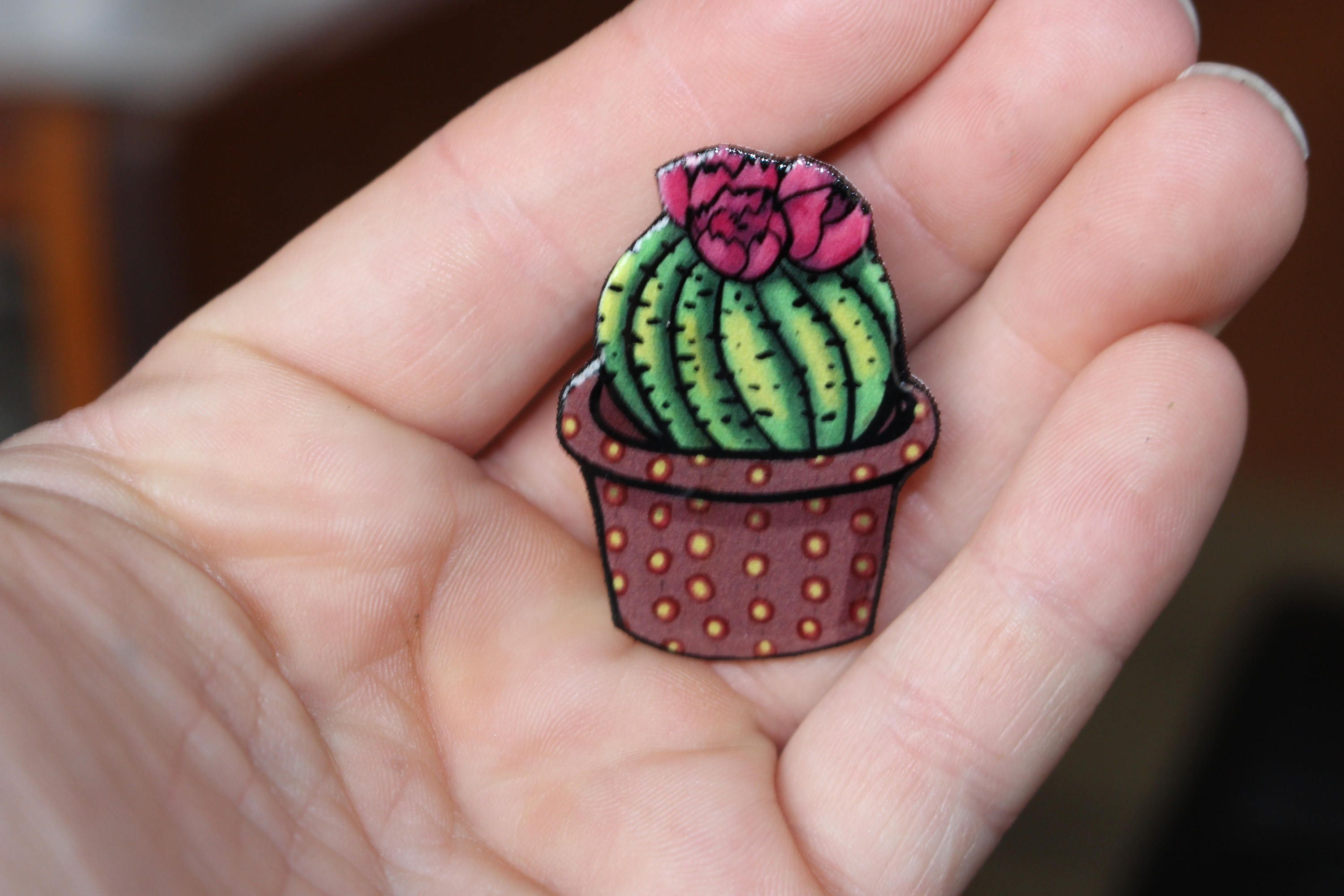 Cactus Magnet For Car Locker Or Fridge Great Gift For Cacti Lovers