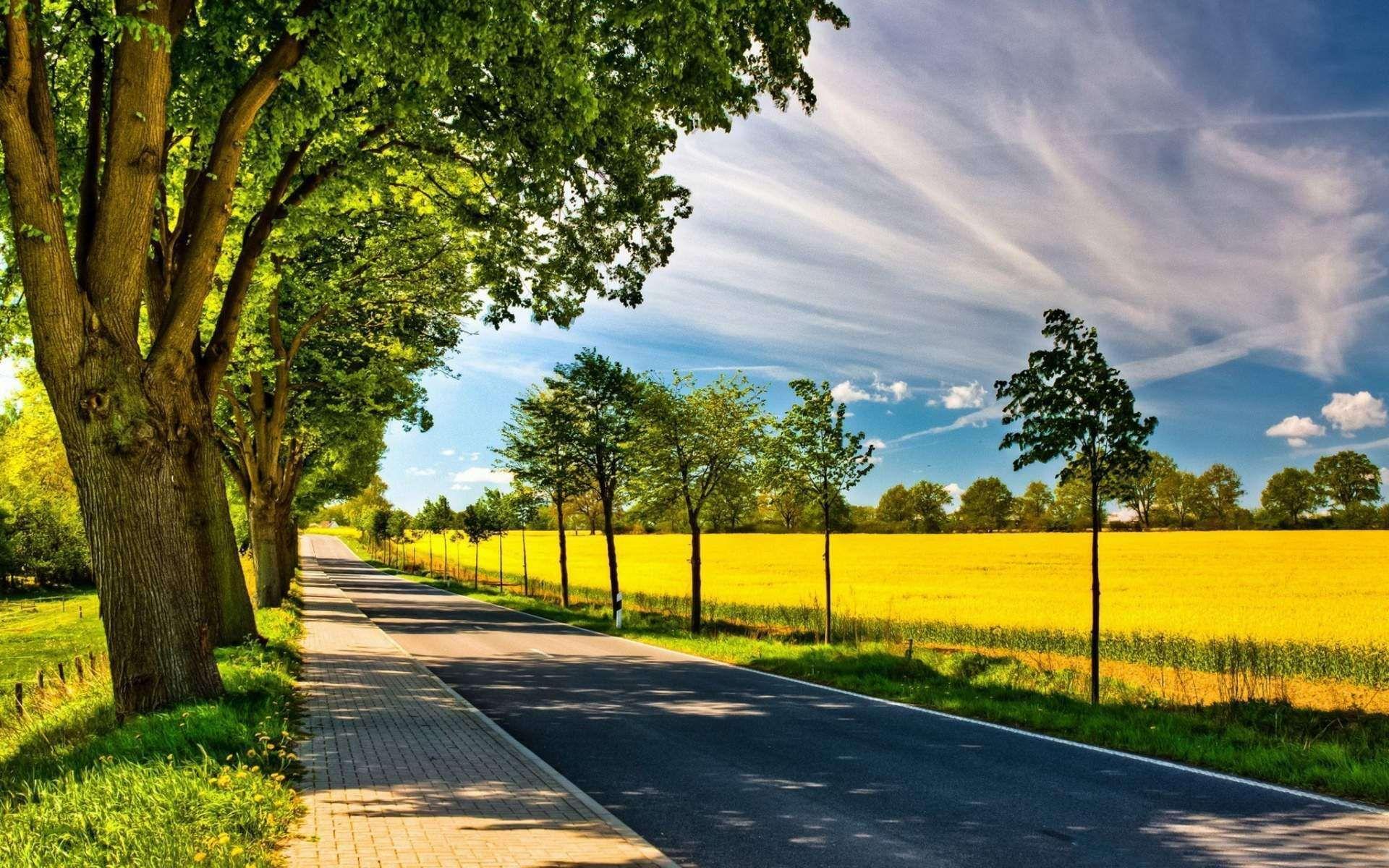 Natural landscape HD Images