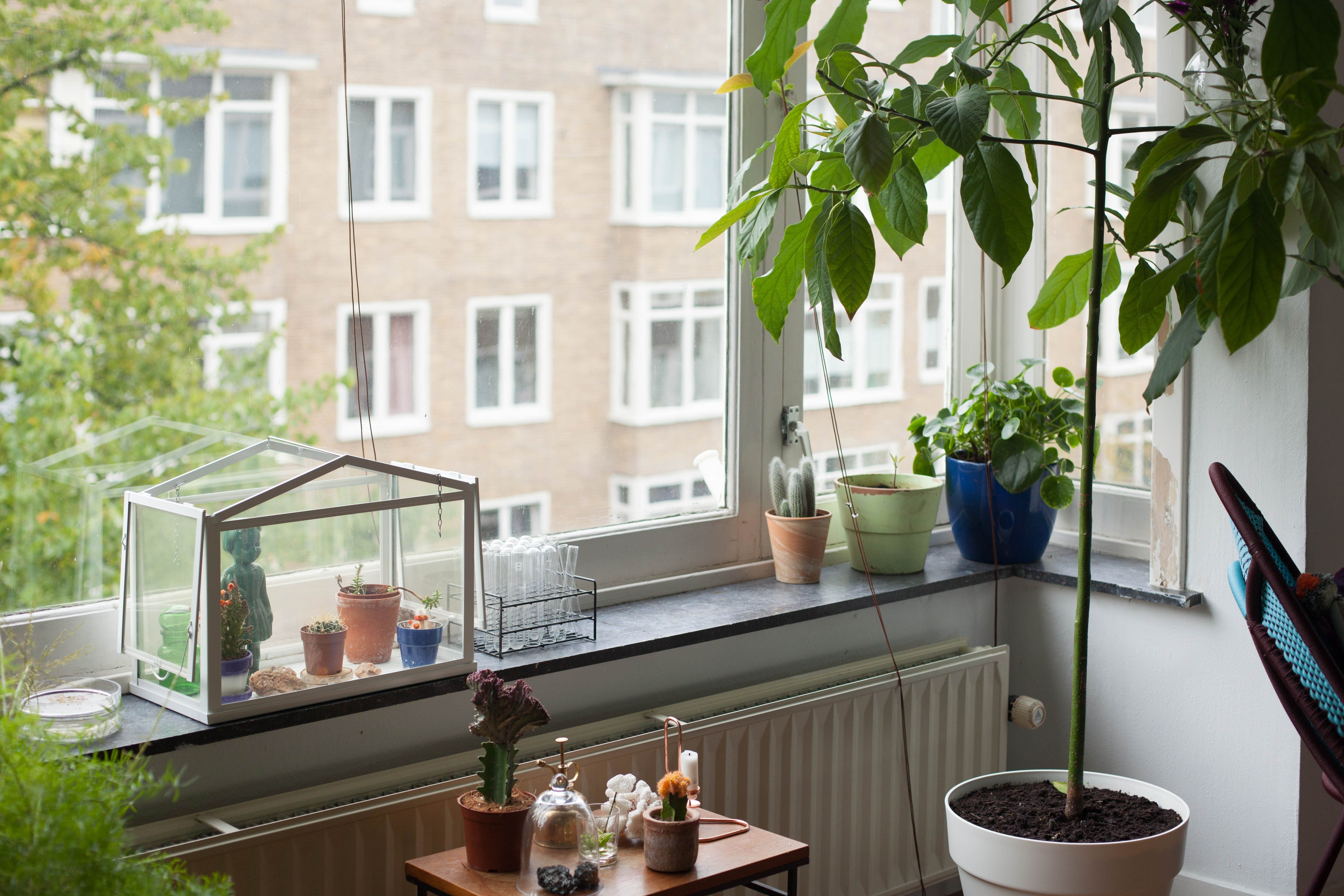 House Tour A Bright Amsterdam Apartment - Apartment Therapy