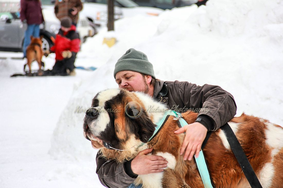 WORLD CHAMPIONSHIP DOG WEIGHT PULL