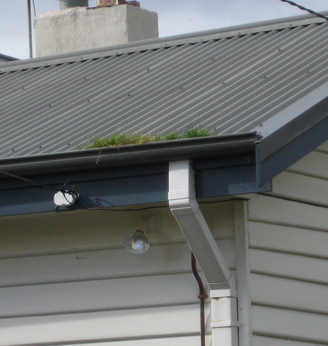 Houston And Surrounding Suburb Homeowners Can Expect Exceptional Service From Ned Stevens Gutter Cleani Home Maintenance Autumn Home Home Maintenance Checklist