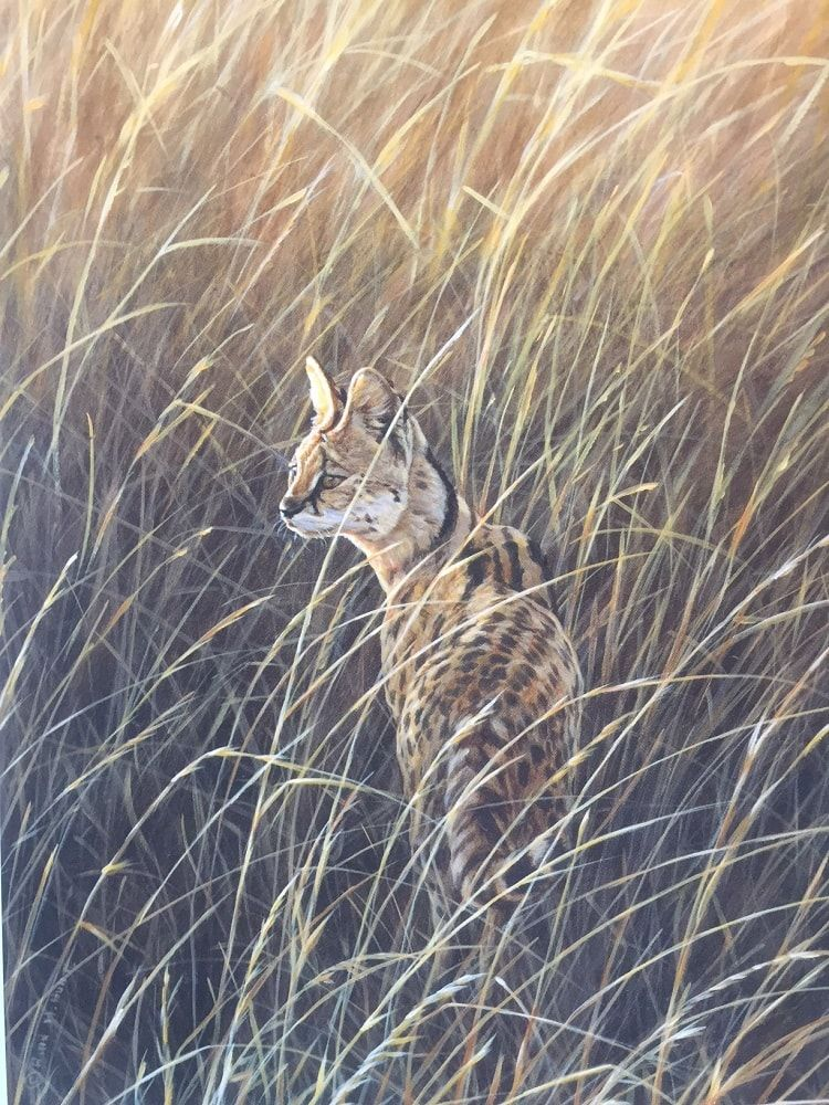 Serval Painting Original Painting by Alan M Hunt Big Cat