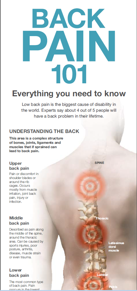back pain what should you know back pain infographic