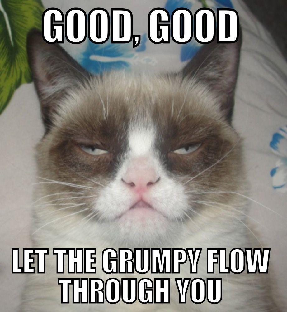 All Hail Darth Tardar Sauce Grumpy Cat Good Grumpy Cat Meme Funny Grumpy Cat Memes