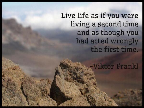 Viktor Frankl Quotes Mesmerizing Viktor Frankl Quotes On Happinessquotesgramquotesgram
