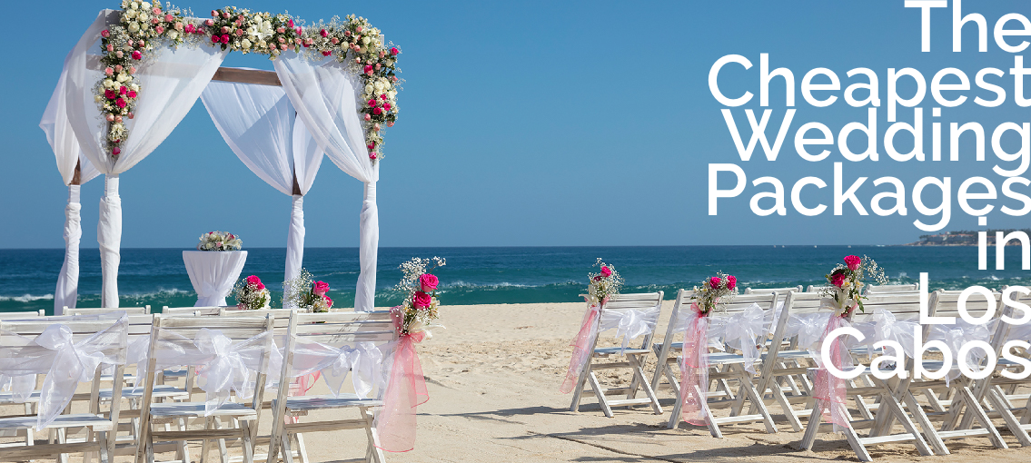 Cheapest Los Cabos Wedding Packages With Images Cheap Wedding Packages Los Cabos Wedding Wedding Package