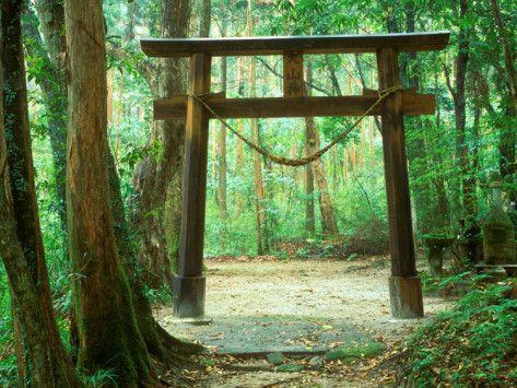Mountain Shrine, Yakushima, Kagoshima, Japan Photographic Print