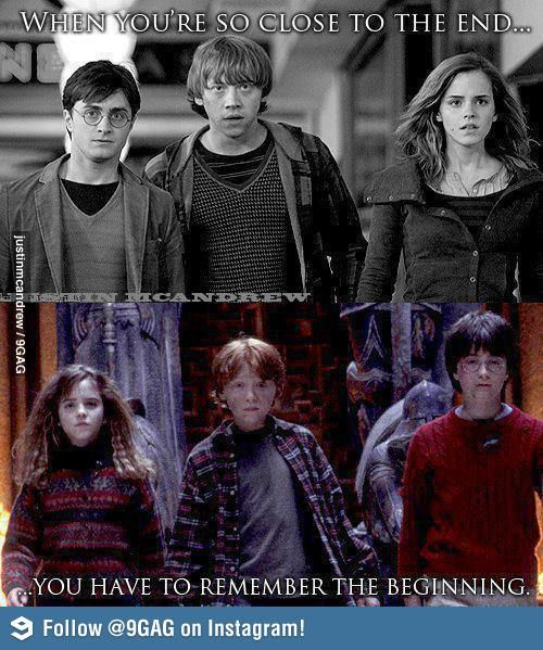 Harry Potter So True Harry Potter Harry Potter Funny Harry Potter Obsession