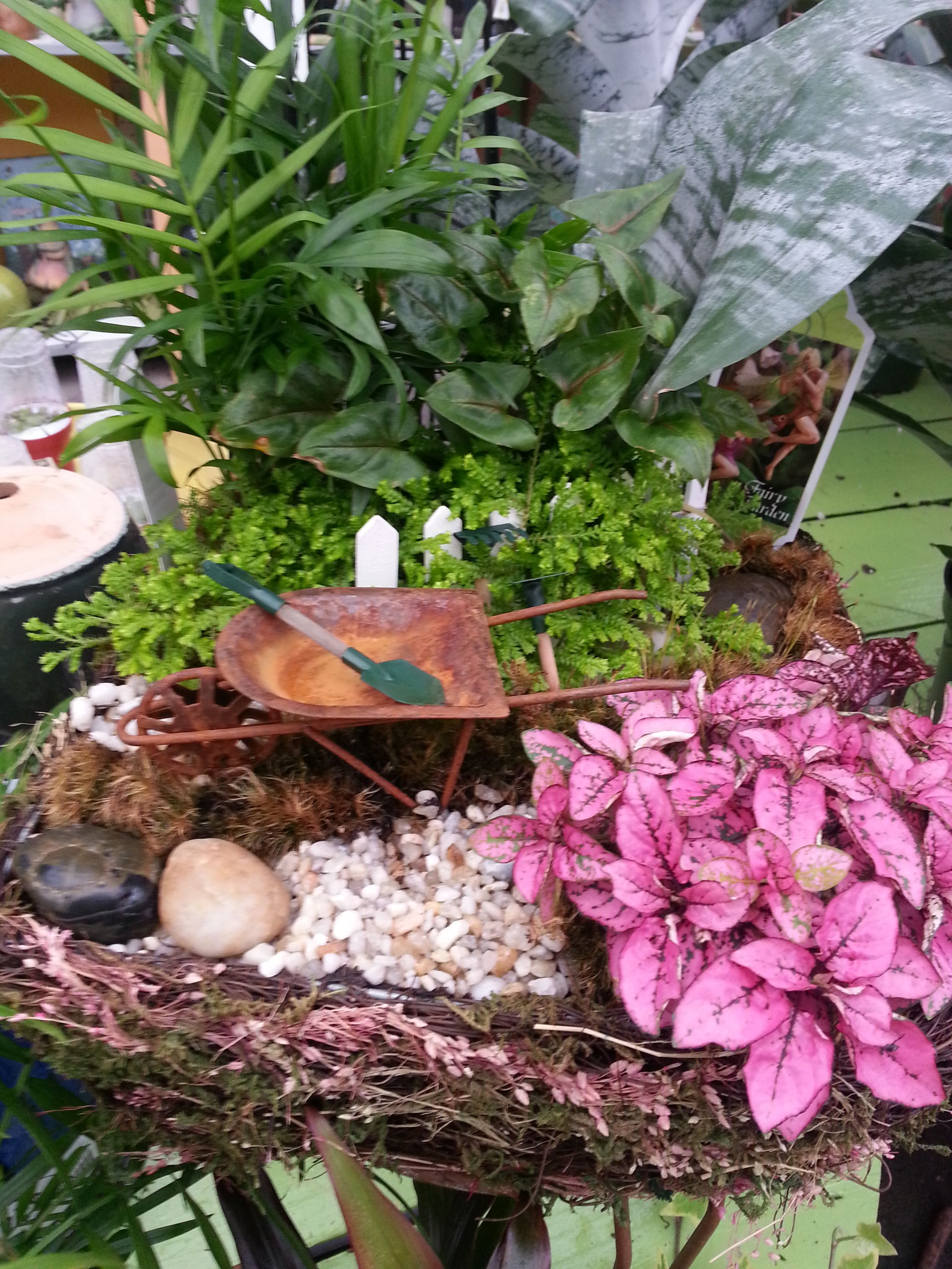 Delightful A #Fairy #Garden Designed By Stauffers Of Kissel Hill Garden Centers. Find  A Location Near You To Pick Up Plants, Accessories And Designs: Www.skh.com. Idea