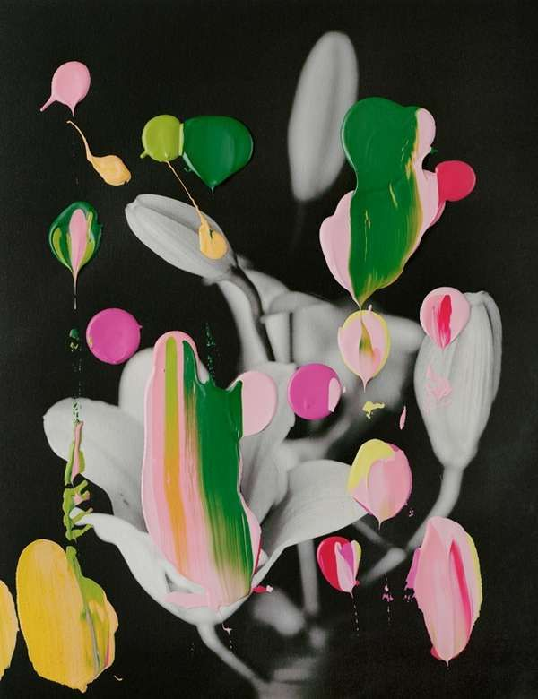 Abstracted Botanical Artworks - These Photo Paintings by Nanna Hänninen Are Creatively Cultivat (GALLERY)