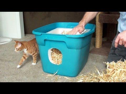 un abri facile construire pour prot ger les chats chatouns pinterest refuges construire. Black Bedroom Furniture Sets. Home Design Ideas