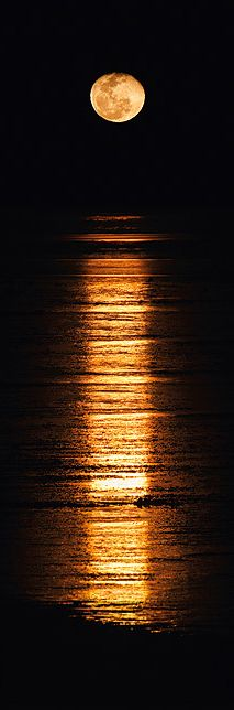 Stairway to the Moon, Broome.