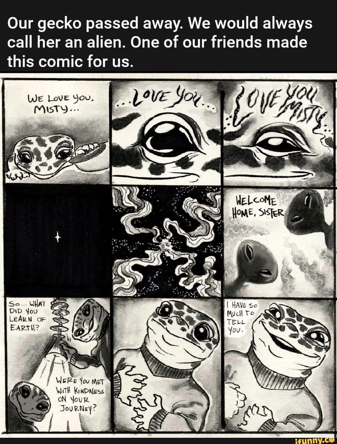 Photo of Our gecko passed away. We would always call her an alien. One of our friends made this comic for us. – iFunny :)