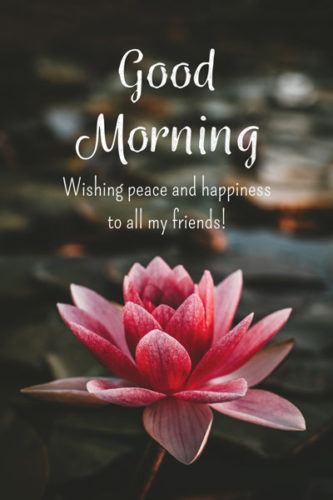 Good Morning Peace Happiness 2 Morning Quotes For Friends Good Morning Quotes Good Morning Images Flowers