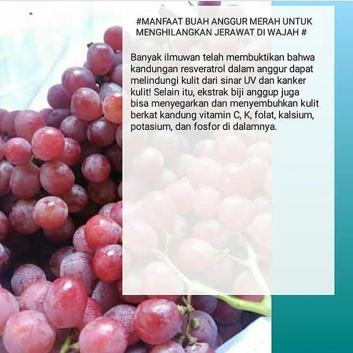 Manfaat Makan Buah Anggur Merah
