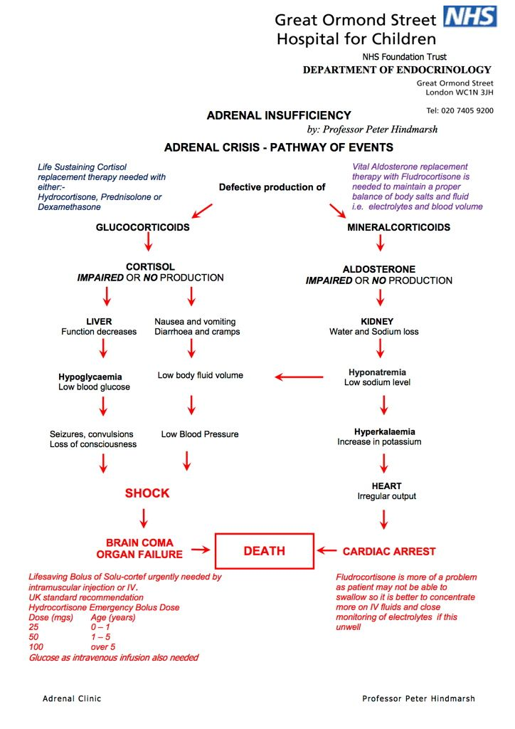 living addison s disease the cortisol pump living adrenal crisis pathway of events created by professor peter hindmarsh